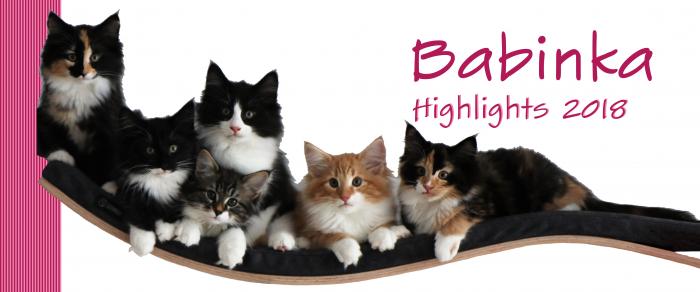Babinka's Highlights 2018
